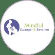 't Kleine Wonder - Verloskundigenpraktijk Lelystad - Online Zwangerschap Cursussen - Mindful Zwanger en Bevallen